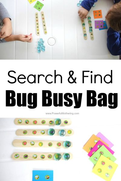 Search and Find Bug Busy Bag