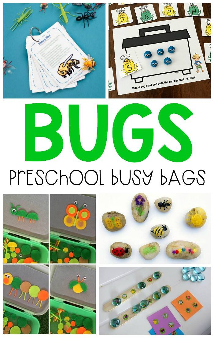 Bug Busy Bags For Preschoolers