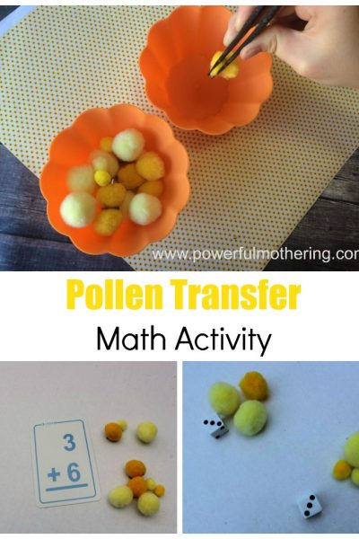 Pollen Transfer Math Activity