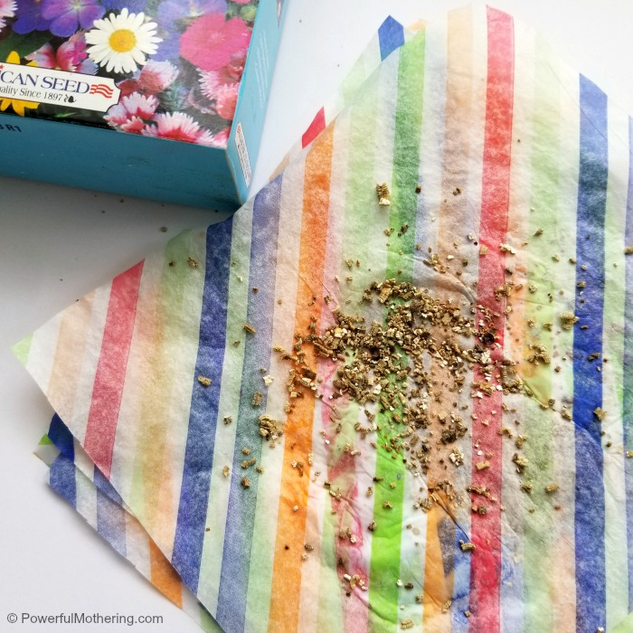 Adding Seeds To Tissue Paper For Plantable Paper Seed Craft