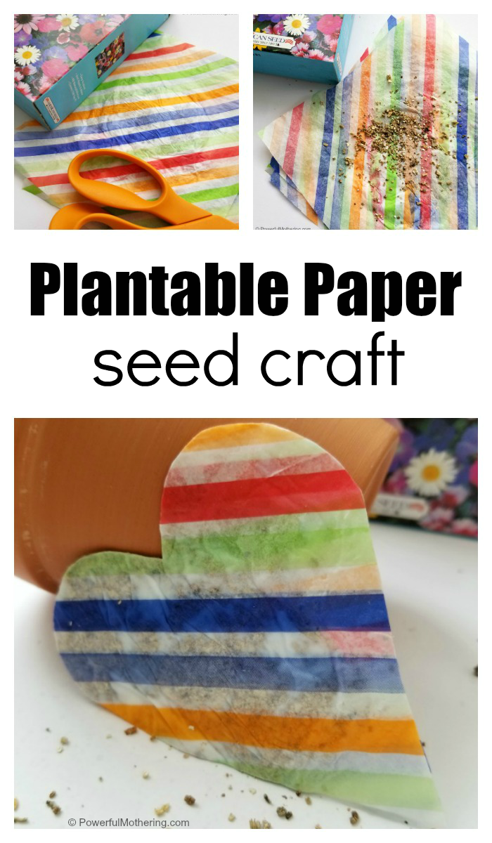 How To Make Plantable Paper Seed Craft With Kids