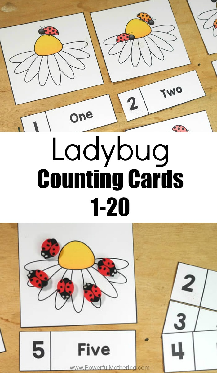 Ladybug Counting Cards 1 20