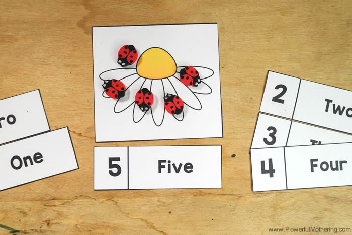 Preschool Toddler Counting Cards