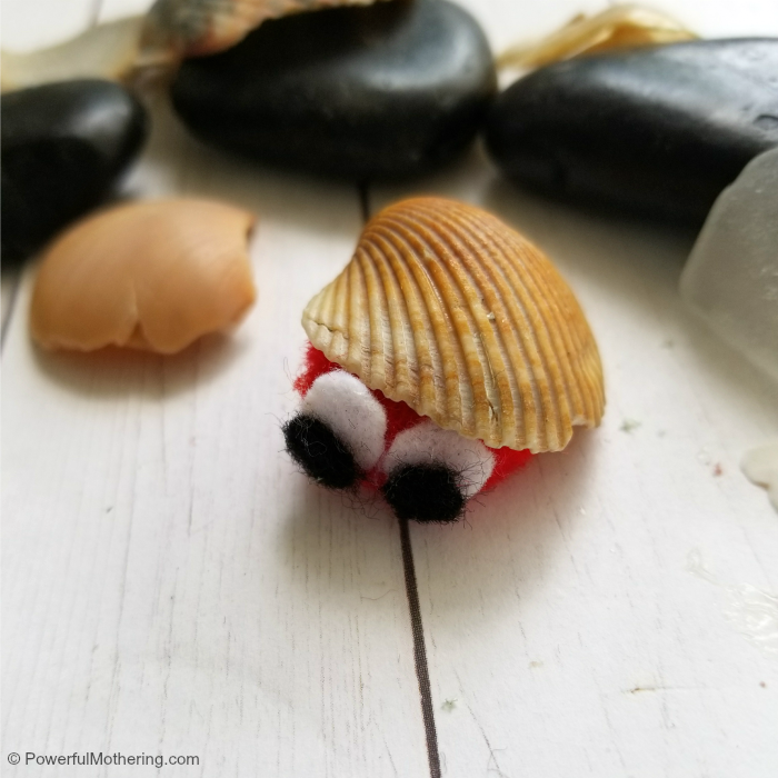 finished pompom hermit crab craft