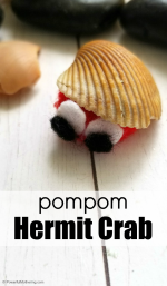 Pompom Hermit Crab Craft for Kids