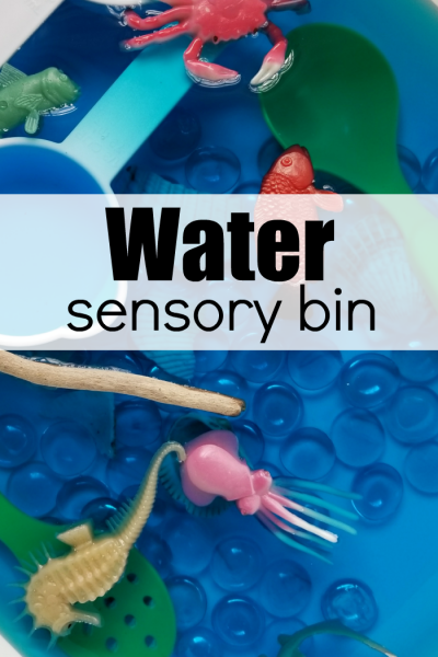 Ocean-Themed Water Sensory Bin for Kids