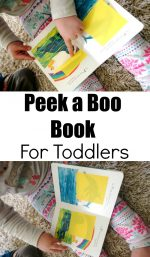 Peek a Boo Book For toddlers