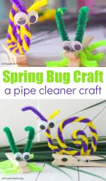 DIY Pipe Cleaner Insects Craft