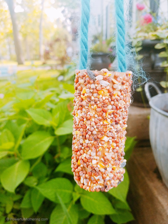 A simple bird feeder kids can make