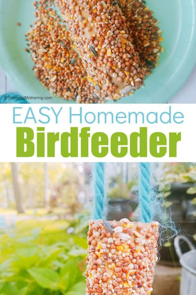 A simple bird feeder kids will love making!