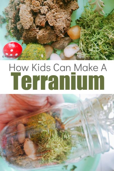 Help Kids Build A Terrarium