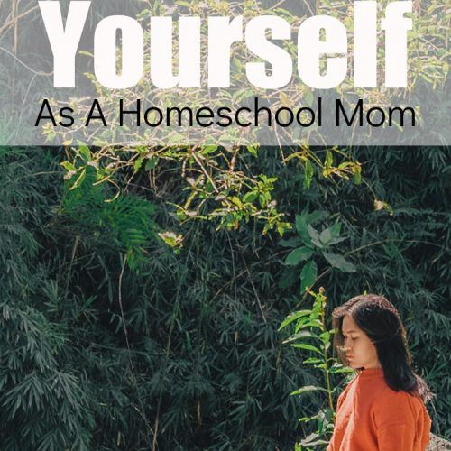 As a homeschool mom, we need to make sure we take care of ourselves. If we don't take care of ourselves, we can't take care of, and teach, our children.
