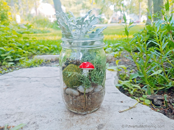 A fun terrarium made by kids.