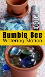 DIY Bumble Bee Watering Station