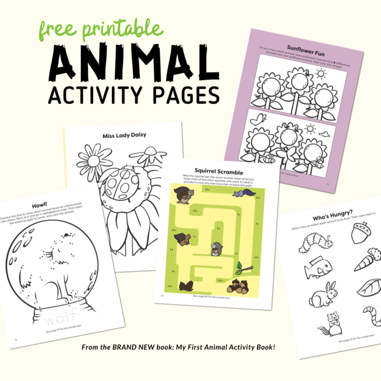 Animal Activity Printables For 3-5 Year Olds