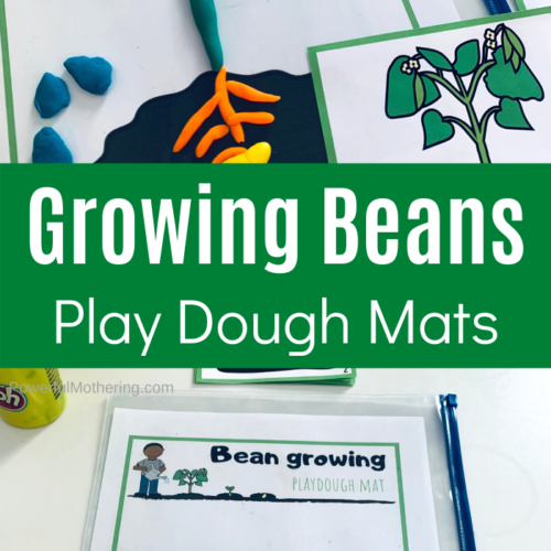 A simple and fun play dough activity for explaining what a seed goes through when it gets planted. This includes the free printables as well.