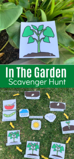 Seed Life Cycle Scavenger Hunt Printable