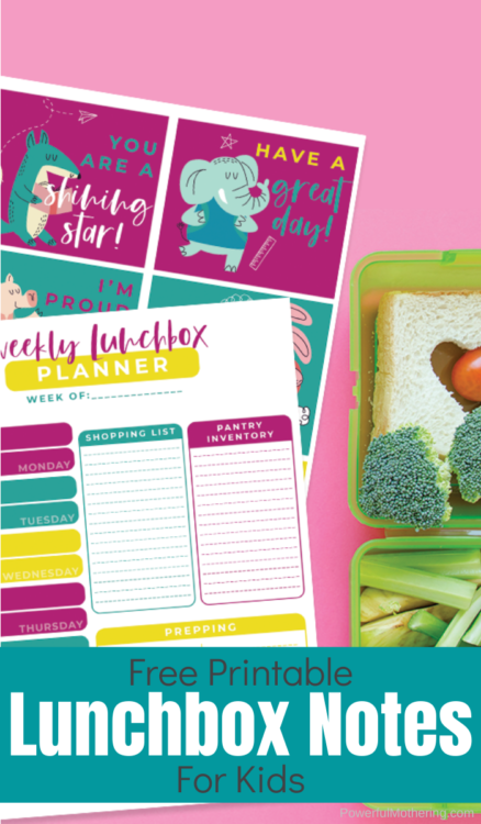 A Free Printable Lunchbox Notes & Weekly Lunch Planner. Give your kids a smile during their school day plus help make your life easier with a printable lunch planner.
