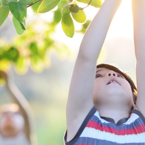 Developing a sense of place in nature helps children feel comfortable connecting with the outdoors through active exploration and the ability to be still and observant.