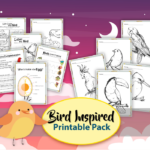 All About Birds Printable Learning Pack